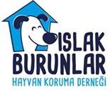Islak Burunlar Hayvan Koruma Derneği Logo